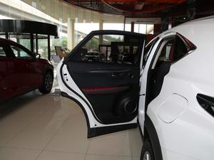 2018款200 锋尚版 全驱 后车门
