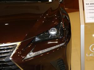 2017款300 锋行版 前驱 头灯