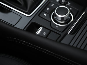 2017款两厢 2.0L 自动运动型 驻车制动器