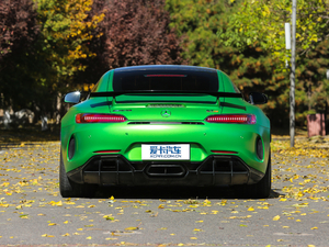 2017款AMG GT R 纯后