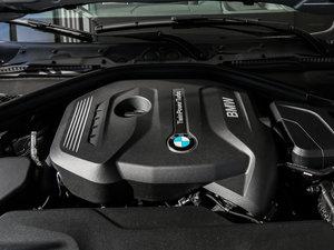2017款320Li 豪华设计套装 其它