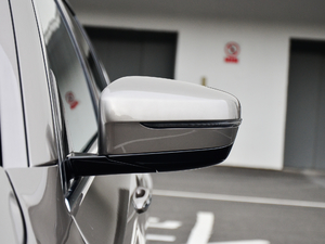 2018款530Li 领先型 豪华套装 后视镜
