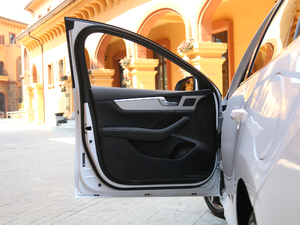 2019款Pro 1.5TI 自动智联锋耀型 驾驶位车门