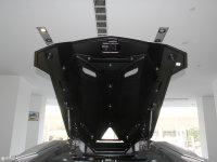 其它Aventador 其它