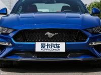 细节外观Mustang中网