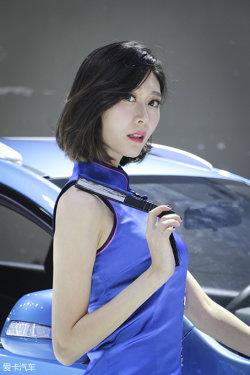 广州车展陆风车模