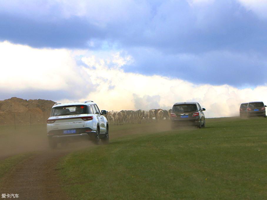试驾;紧凑型SUV;草原;呼伦贝尔