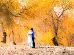 新疆印象胡杨婚纱 组成一个秋色的童话