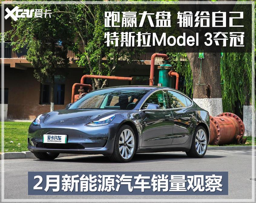 2月新能源汽车销量观察