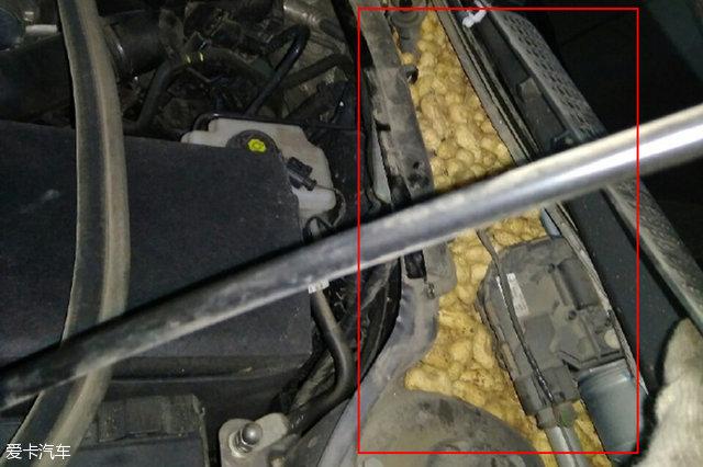 老鼠也得过年!发动机舱内惊现大量花生
