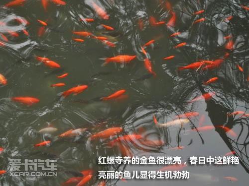 C5探寻京郊