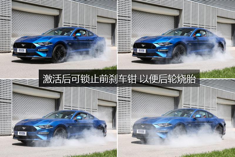 Mustang 5.0L V8 GT