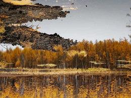 一岁一枯荣 乌兰布统草原看秋景