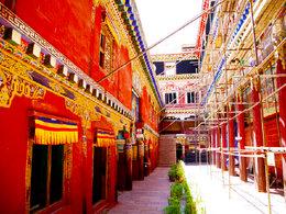 身已回心未归 难忘的西藏记忆