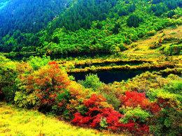 冬日的童话世界 游最美九寨沟