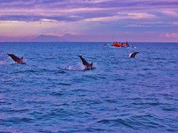 蜜月旅行 巴厘岛那片泛蓝天空