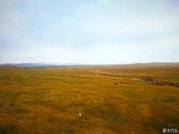 一家三口周末草原自驾行 去寻找那久违的蓝天