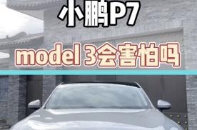 小鹏P7 model3会害怕吗