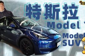 耳哥说车 频上热搜的Model Y只是Model 3的SUV