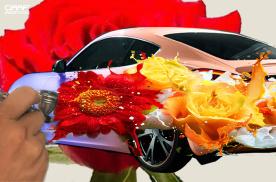 车身彩绘是什么——是浪漫