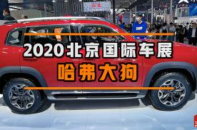 2020北京车展-哈佛大狗