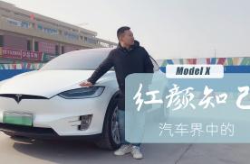 汽车界中的红颜知己,表弟借开3天特斯拉Model X后终身难