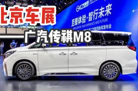 2020北京车展|第一视角实拍新款广汽传祺M8,豪华感不输埃