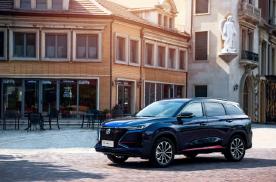 """6月车市持续回暖,中国品牌和新能源汽车成""""难兄难弟""""?"""
