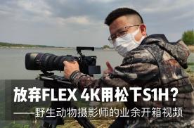 """百万相机的""""备胎""""?野生动物摄影师带来松下S1H开箱视频"""