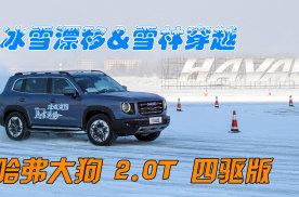 分秒试驾:冰雪漂移与雪林穿越!全面体验哈弗大狗2.0T四驱版