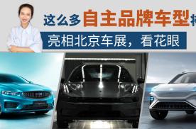 「出行情报局」这么多自主品牌车型将亮相北京车展,看花眼