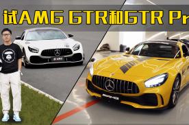 585马力 后轮转向 试AMG GTR和GTR Pro