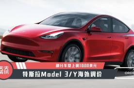【天天资讯】特斯拉Model 3Y海外调价,部分车型上调1000美元