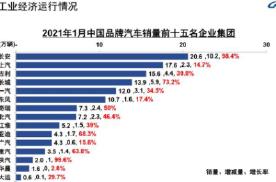 车坛快报   1月中国品牌车企销量TOP