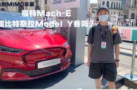 和Model Y正面刚,福特野马MACH-E有何实力?