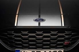 福特PUMA ST特别版正式发布 有望于年底正式交付