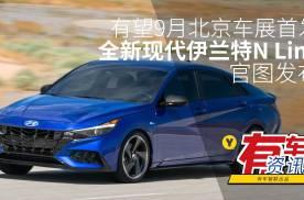 有望9月北京车展首发 全新现代伊兰特N Line官图发布