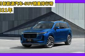 2021年1月新能源汽车销量SUV排行榜,理想ONE位居第一