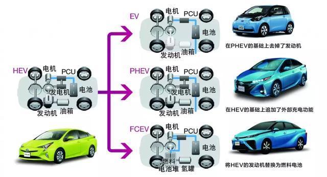 "WOW!""全擎""加速,丰田上海车展释放出哪些重磅信号?"