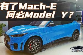 体验福特Mach-E后:先排除Model Y,和极氪二选一