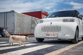 欧拉白猫预售只要7.58万元起 续航为360公里和401公里