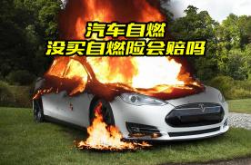 汽车自燃险有必要买吗?给你最实在的建议,这样买车险不后悔