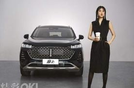 科技圈汽车圈时尚圈的破壁联合,WEY全新旗舰SUV出道即C位