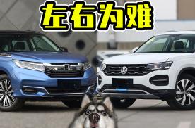 新款大众探岳和本田冠道怎么选?