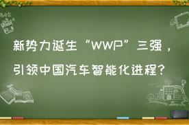"""新势力诞生""""WWP""""三强,引领中国汽车智能化进程?"""