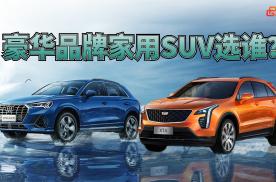 【胖哥选车】豪华品牌家用SUV能买谁?