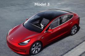 拼多多贴钱低价卖Model 3 特斯拉拒绝 原因几何?