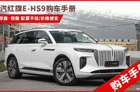 一汽红旗E-HS9购车手册:推荐旗·悦 价格最便宜配置并不低
