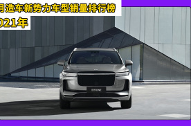 2021年1月造车新势力车型销量排行榜,理想ONE夺得冠军