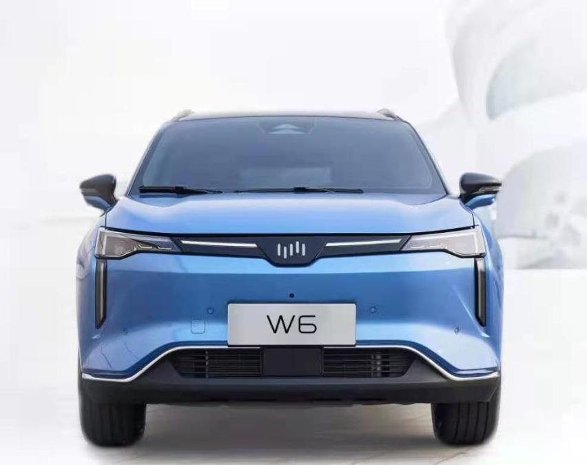 女司机停车福音 威马W6预售,尝尝L4自动驾驶的味道!